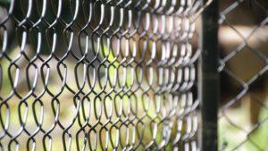 Piccola gabbia