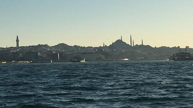 L'iconica Istanbul offre rifugio a oltre 30mila uiguri. Alcuni sono qui da 30 o 40 anni, ma molti sono arrivati negli ultimi due o tre anni. Ora tutti i contatti con casa sono interrotti