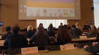 La Giornata internazionale della pace alle Nazioni Unite a Ginevra: come le nuove religioni perseguitate lavorano per l'armonia e la giustizia nel mondo