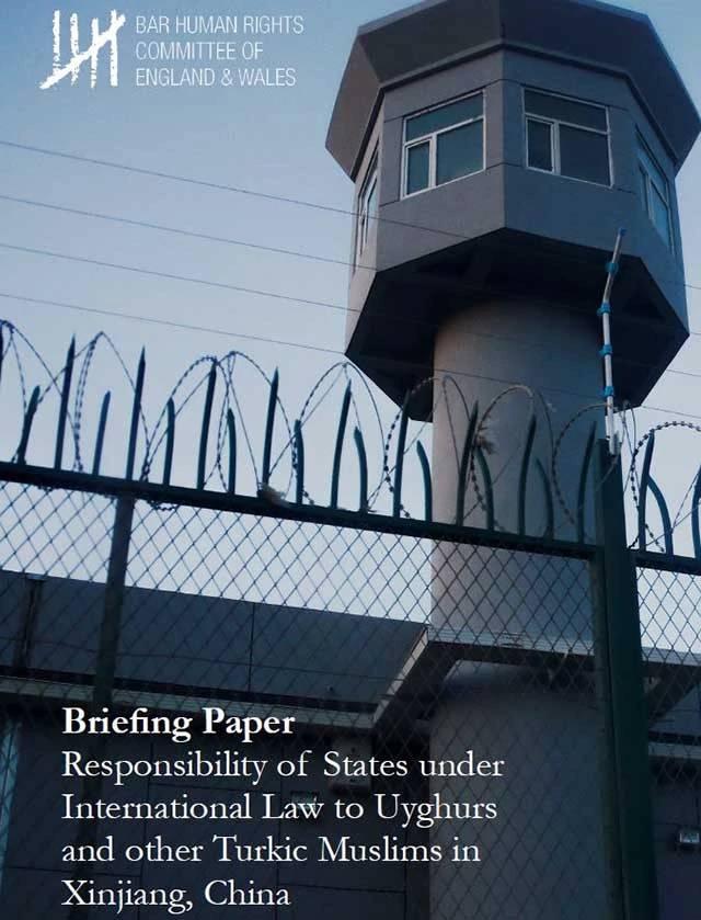 La copertina del rapport