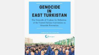 Uiguri: sì, è genocidio. Un nuovo rapporto
