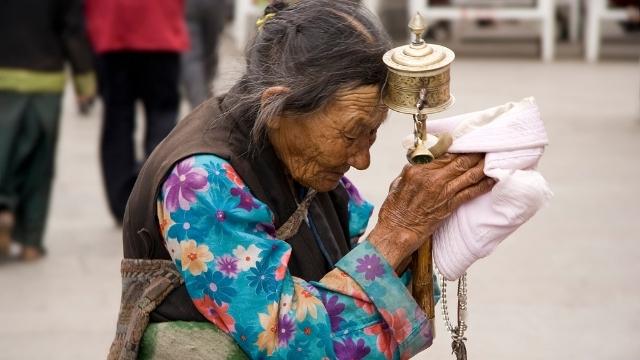 un anziana tibetana in preghiera